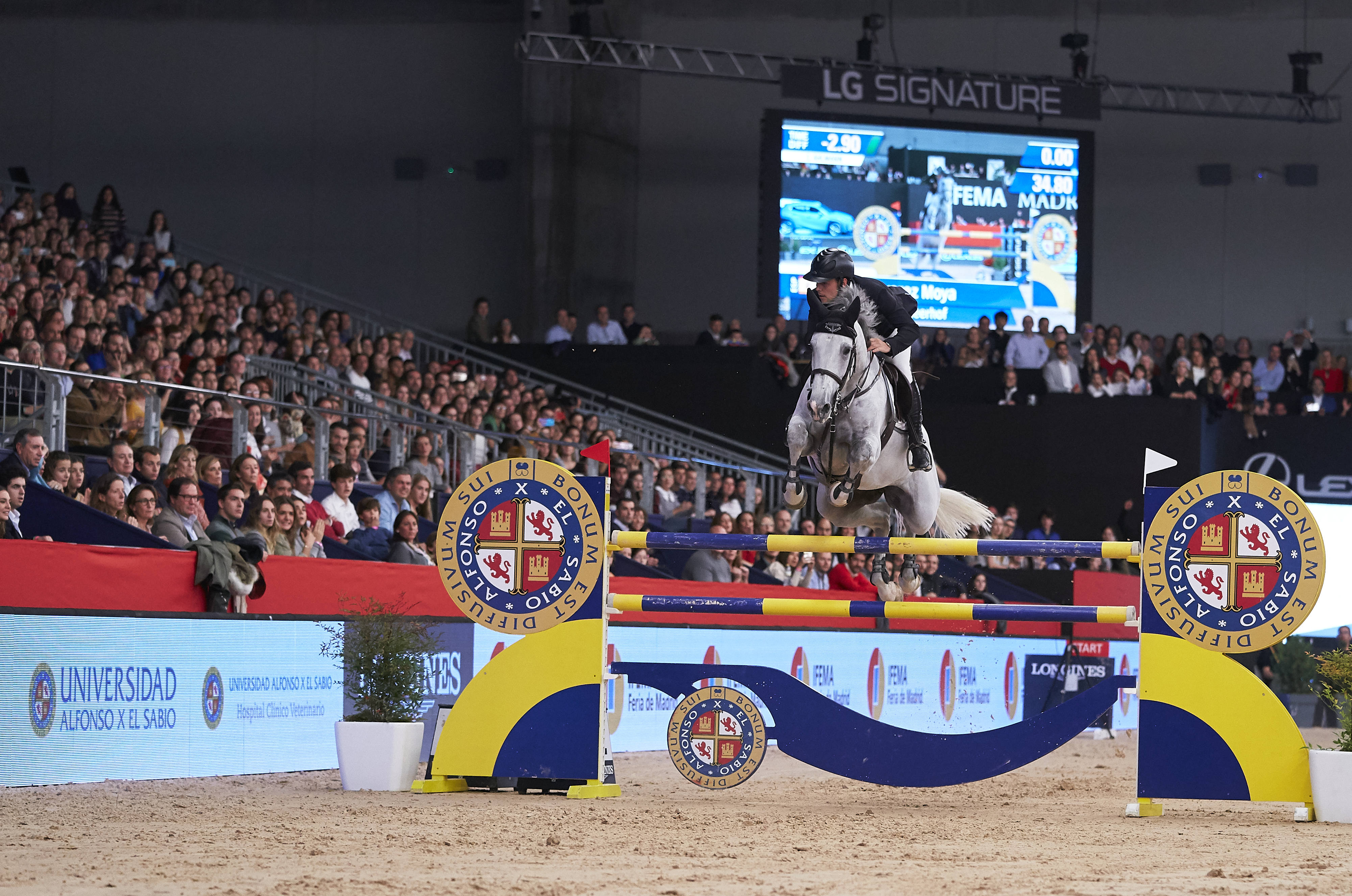 Spanish Tsunami on the second day of the IFEMA Madrid Horse Week